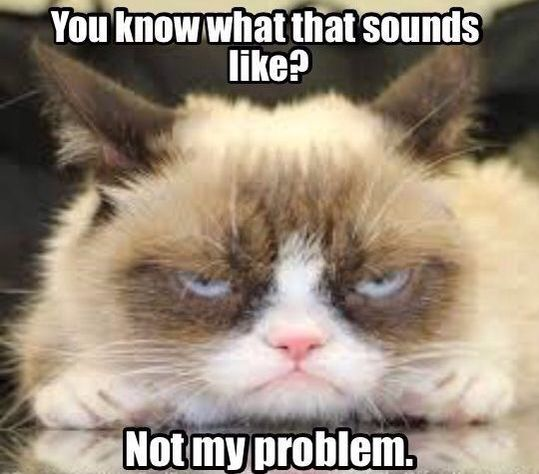 Grumpy Cat. Not my problem.